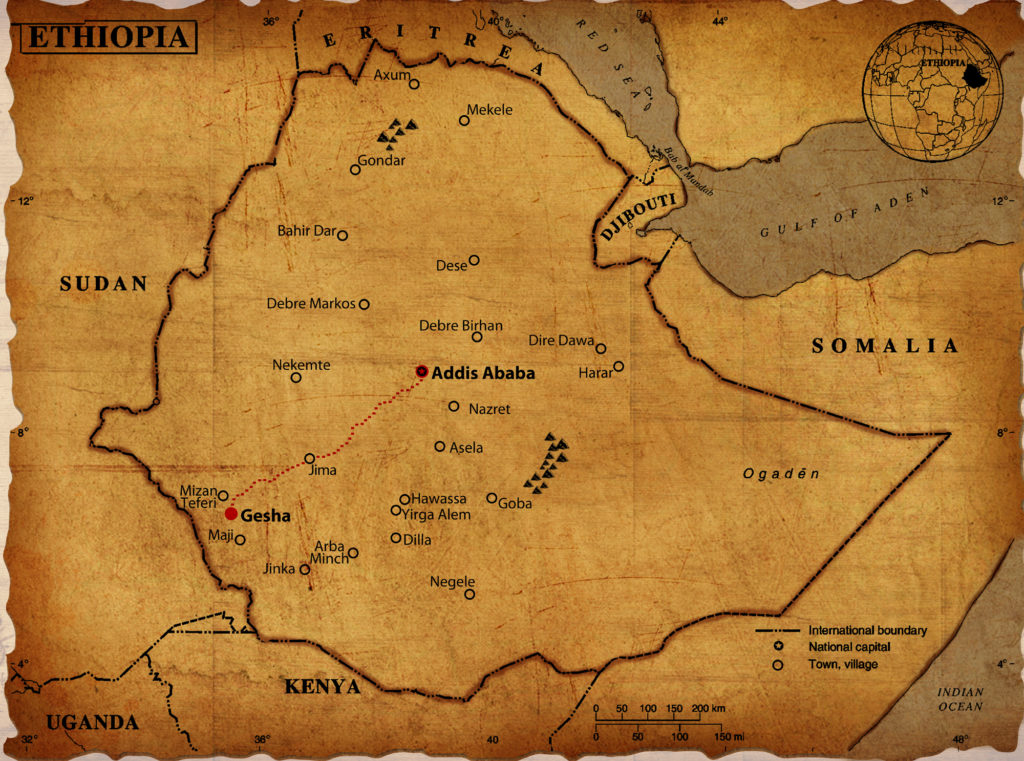 Ethiopia Gesha: Map of the farm