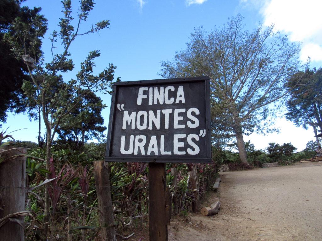 El Salvador Finca Monte Urales
