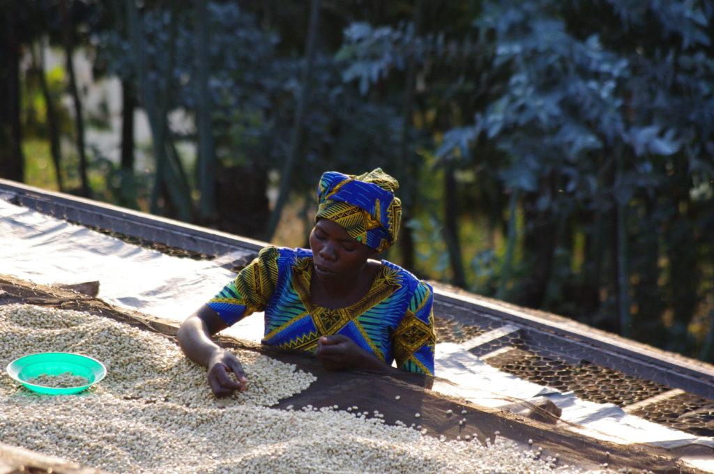 Rwanda Musasa Nkara