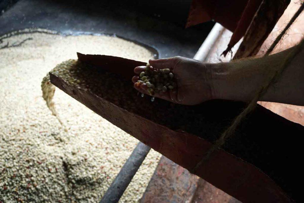 Kenya Handege Pulping-coffee
